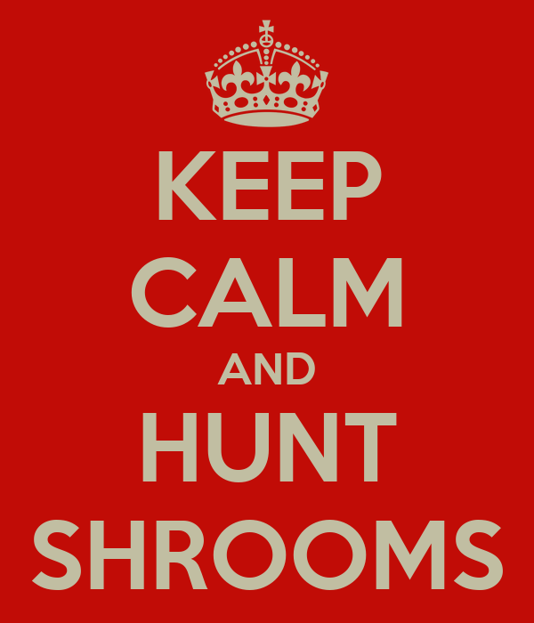 KEEP CALM AND HUNT SHROOMS