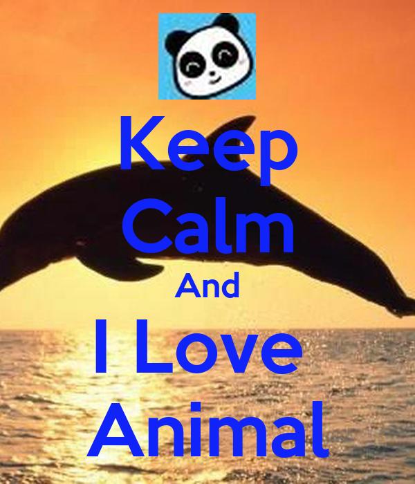 Keep Calm And I Love  Animal
