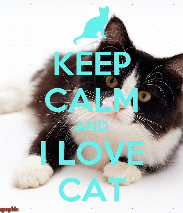 KEEP CALM AND I LOVE CAT