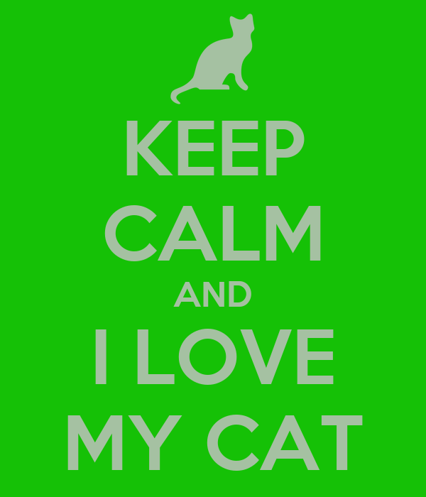 KEEP CALM AND I LOVE MY CAT