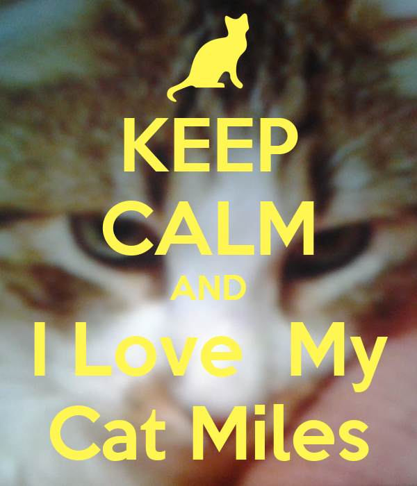 KEEP CALM AND I Love  My Cat Miles
