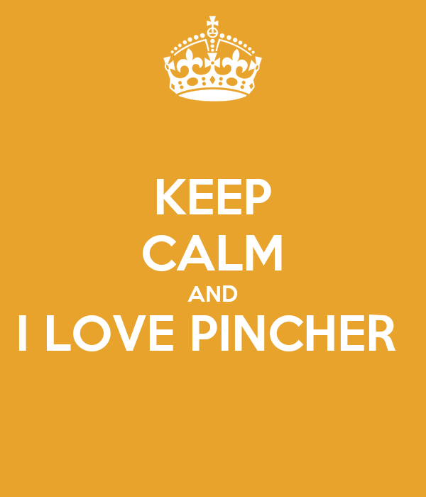 KEEP CALM AND I LOVE PINCHER