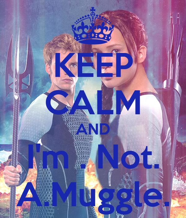KEEP CALM AND I'm . Not. A.Muggle.