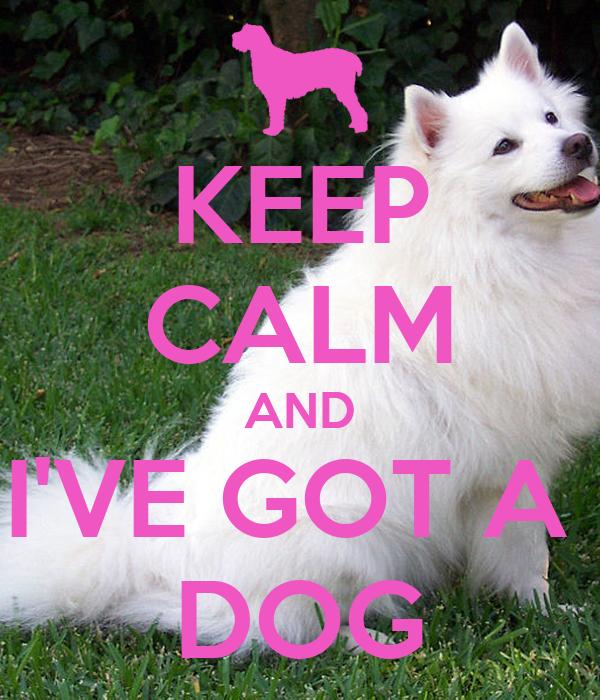 KEEP CALM AND I'VE GOT A  DOG
