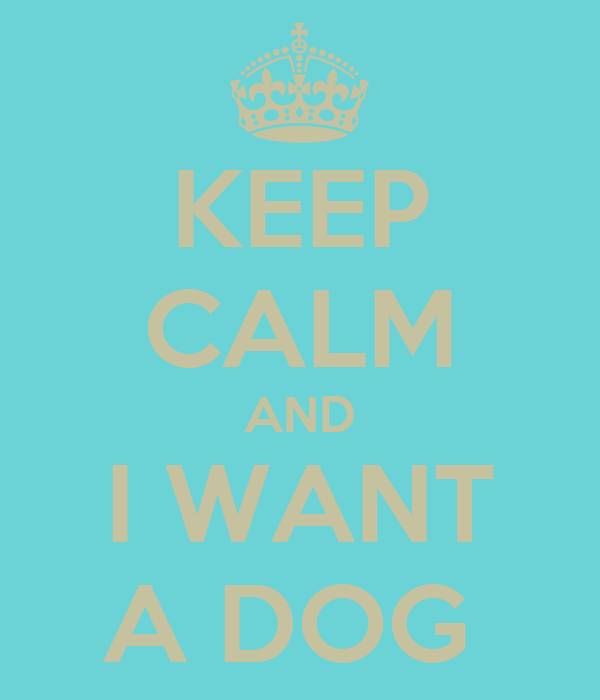 KEEP CALM AND I WANT A DOG