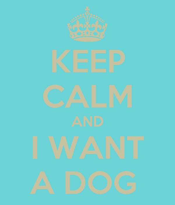 KEEP CALM AND I WANT A DOG