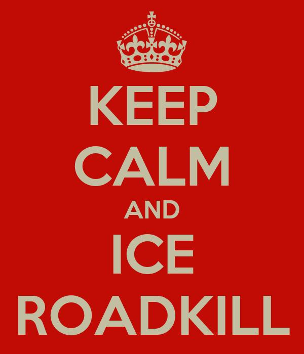 KEEP CALM AND ICE ROADKILL