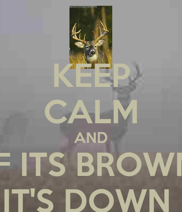 KEEP CALM AND IF ITS BROWN IT'S DOWN