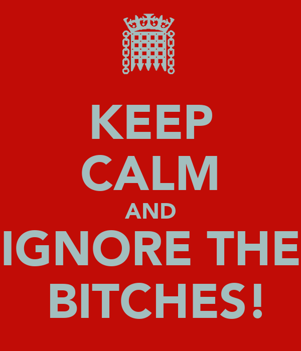 KEEP CALM AND IGNORE THE  BITCHES!