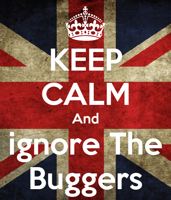 KEEP CALM And ignore The Buggers