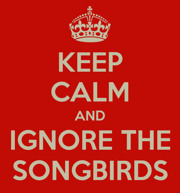 KEEP CALM AND IGNORE THE SONGBIRDS