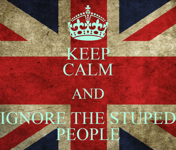 KEEP CALM AND IGNORE THE STUPED PEOPLE