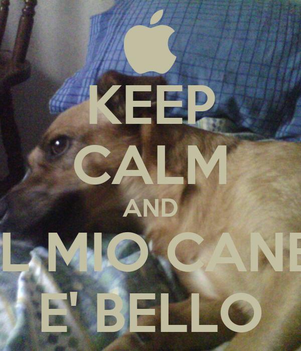 KEEP CALM AND IL MIO CANE E' BELLO