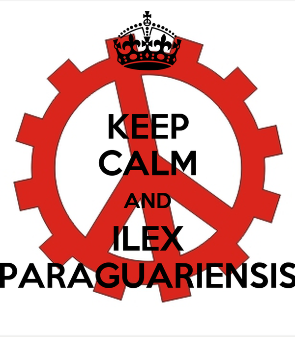 KEEP CALM AND ILEX PARAGUARIENSIS