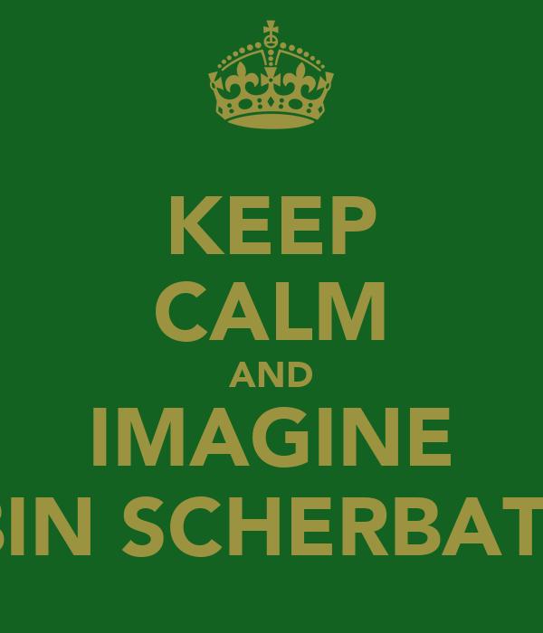 KEEP CALM AND IMAGINE ROBIN SCHERBATSKY