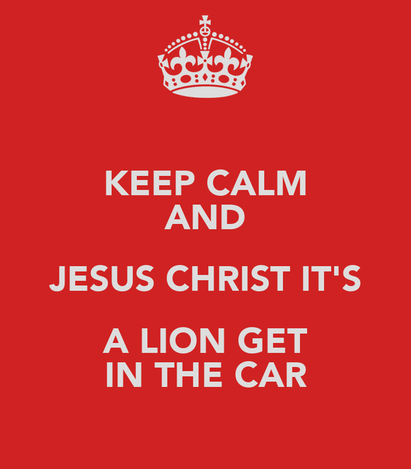 KEEP CALM AND JESUS CHRIST IT'S A LION GET IN THE CAR