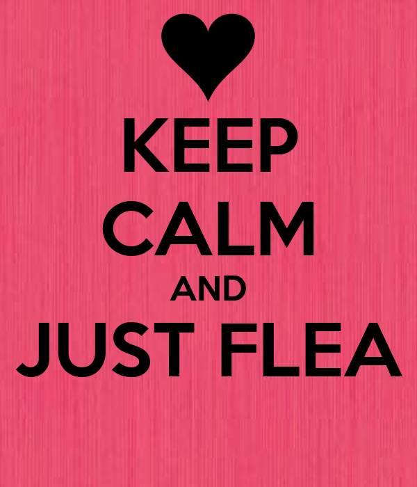 KEEP CALM AND JUST FLEA