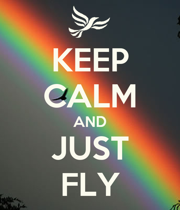 KEEP CALM AND JUST FLY