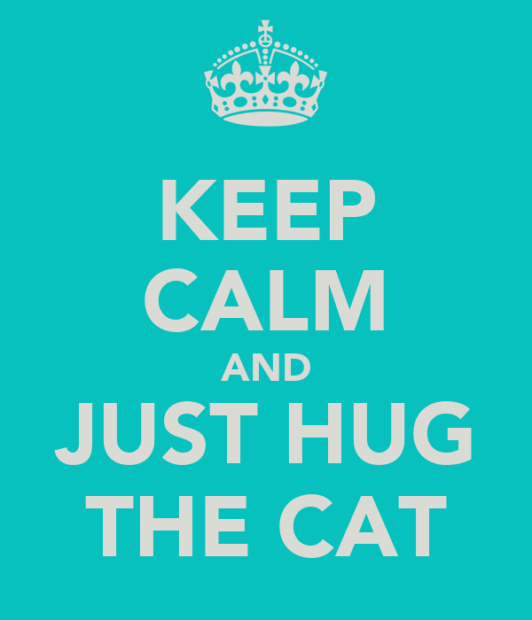 KEEP CALM AND JUST HUG THE CAT