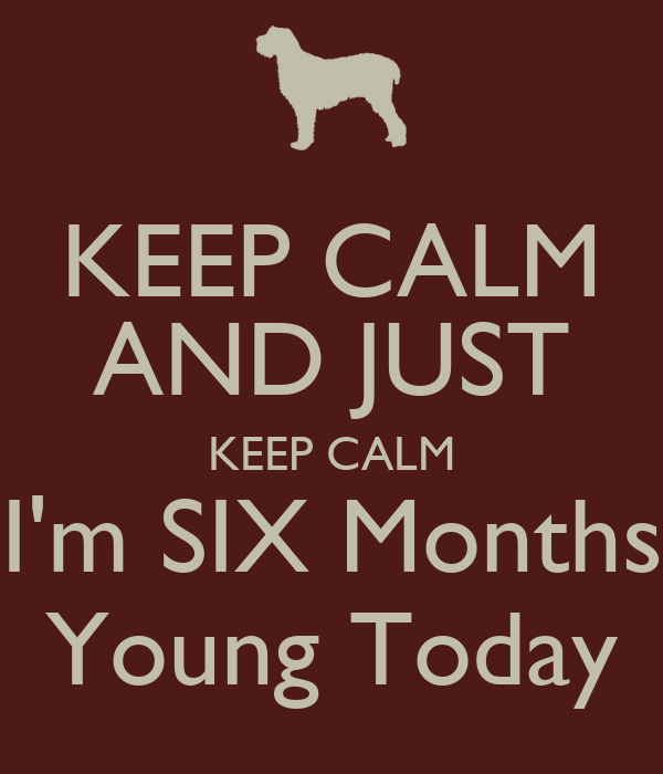 KEEP CALM AND JUST KEEP CALM I'm SIX Months Young Today
