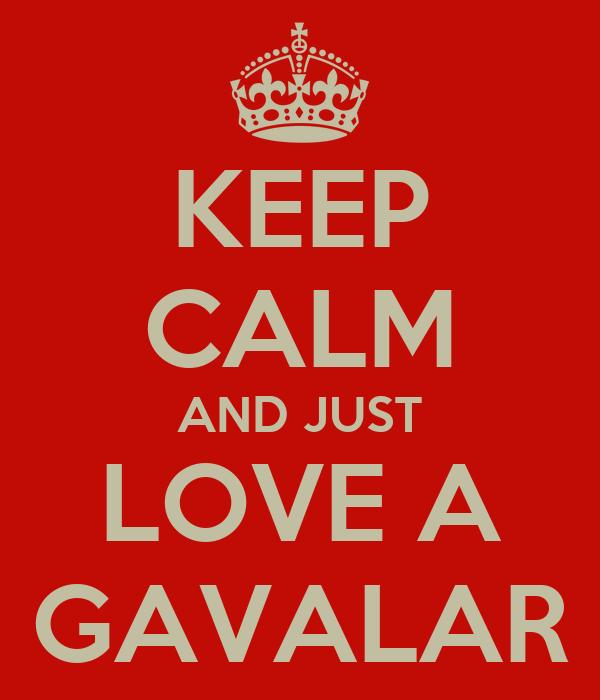 KEEP CALM AND JUST LOVE A GAVALAR