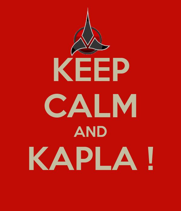 KEEP CALM AND KAPLA !