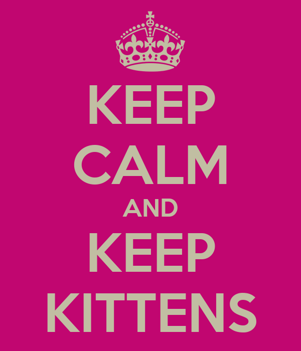 KEEP CALM AND KEEP KITTENS