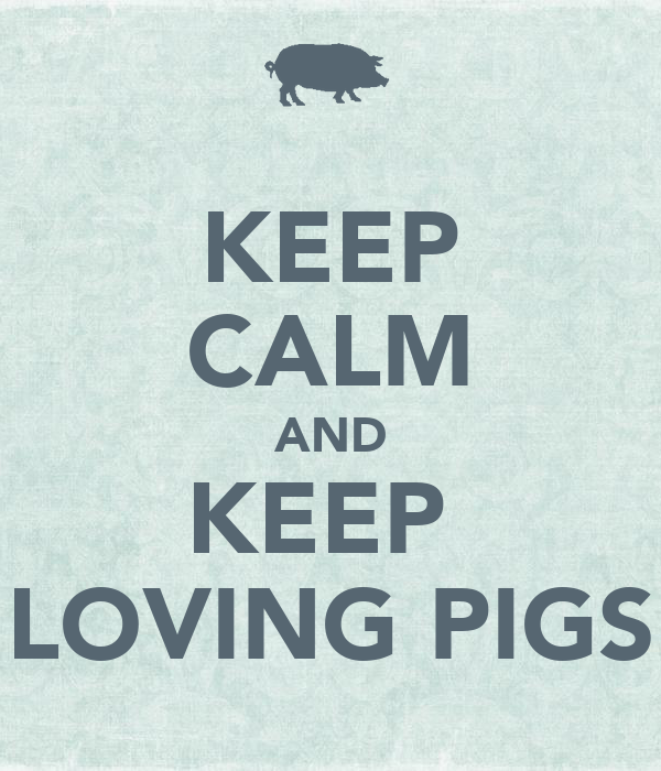 KEEP CALM AND KEEP  LOVING PIGS
