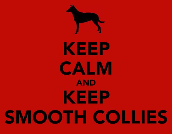 KEEP CALM AND KEEP SMOOTH COLLIES