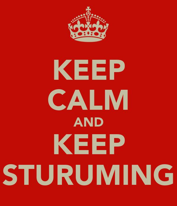 KEEP CALM AND KEEP STURUMING