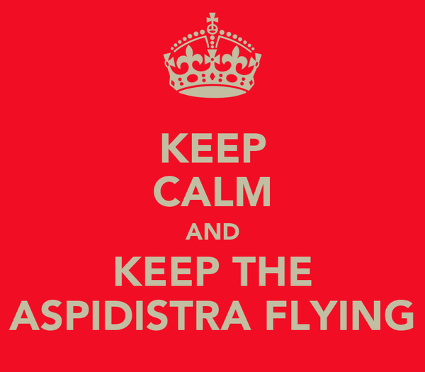 KEEP CALM AND KEEP THE ASPIDISTRA FLYING