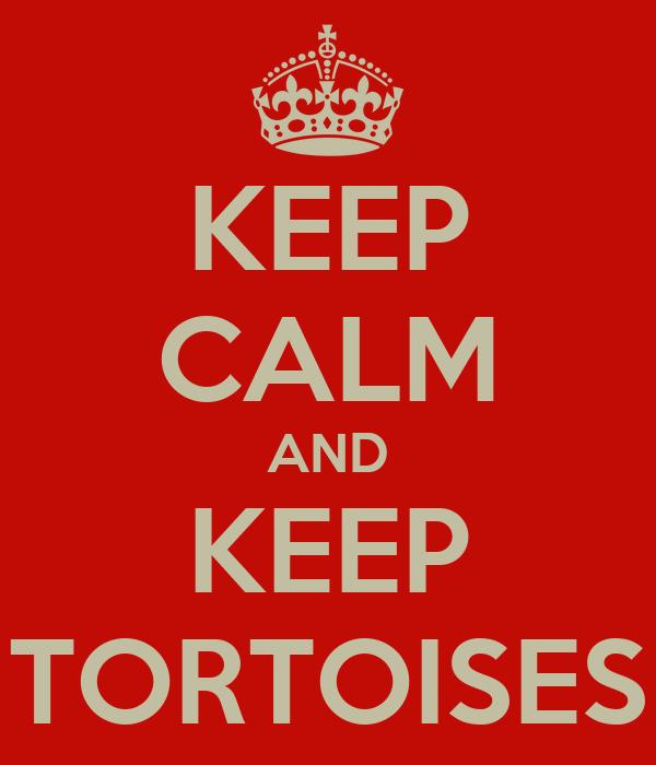 KEEP CALM AND KEEP TORTOISES