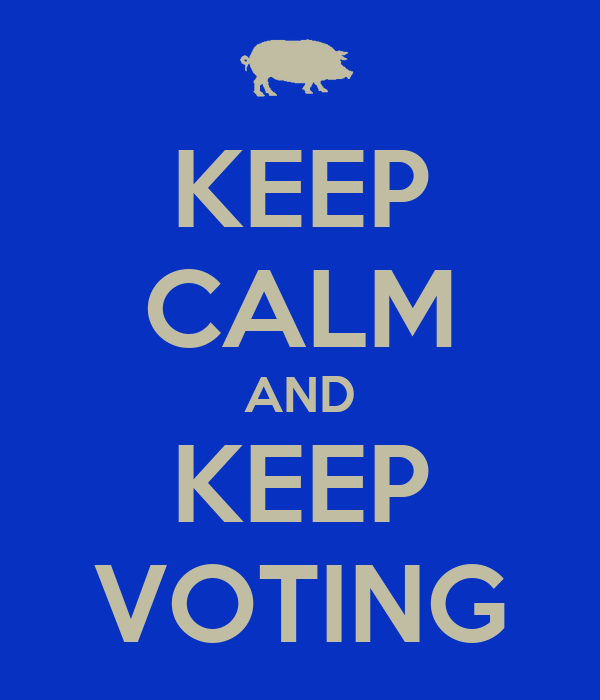 KEEP CALM AND KEEP VOTING