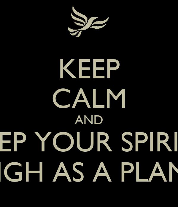 KEEP CALM AND KEEP YOUR SPIRIT= HIGH AS A PLANE