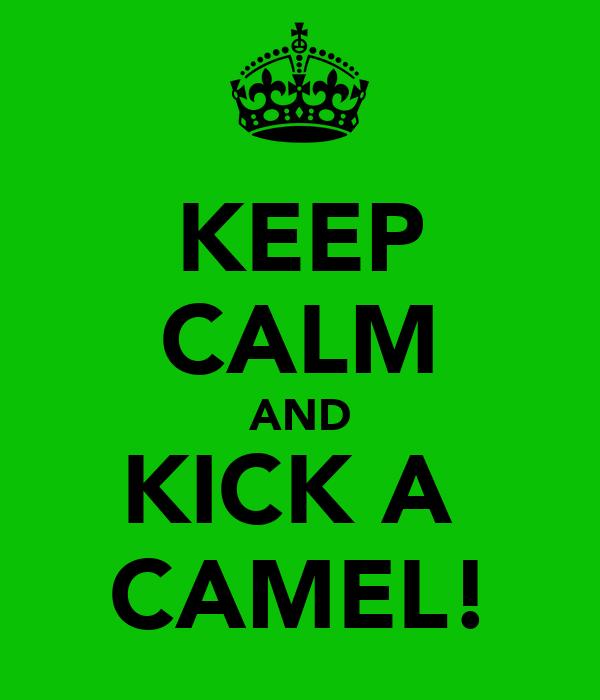 KEEP CALM AND KICK A  CAMEL!