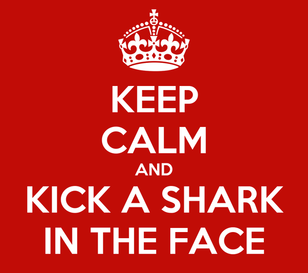 KEEP CALM AND KICK A SHARK IN THE FACE