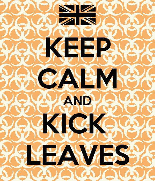 KEEP CALM AND KICK  LEAVES