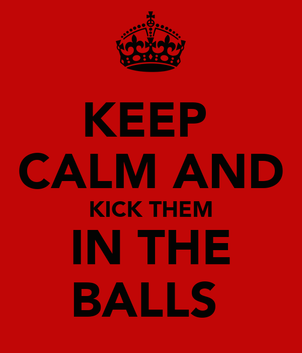 KEEP  CALM AND KICK THEM IN THE BALLS