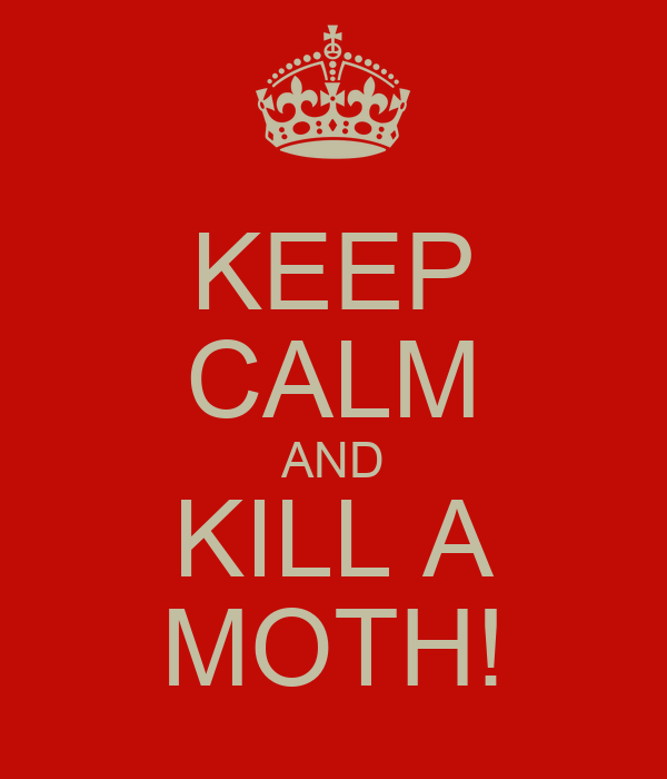 KEEP CALM AND KILL A MOTH!