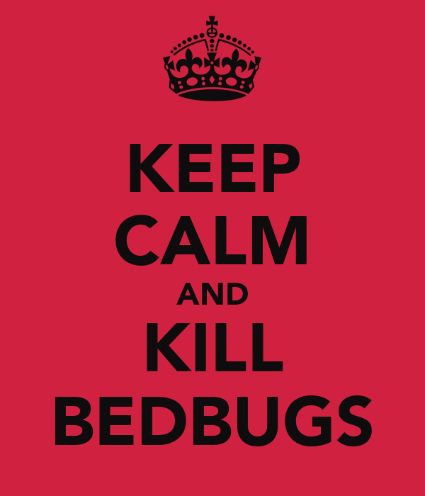 KEEP CALM AND KILL BEDBUGS