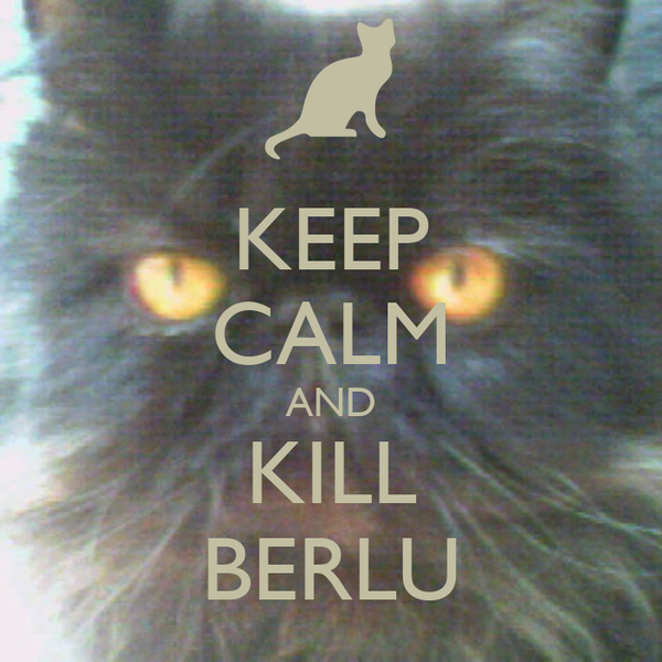 KEEP CALM AND KILL BERLU