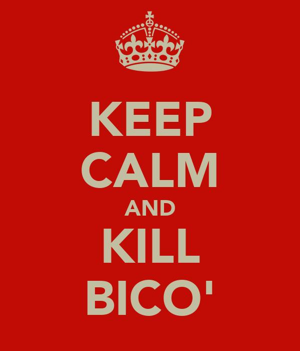 KEEP CALM AND KILL BICO'