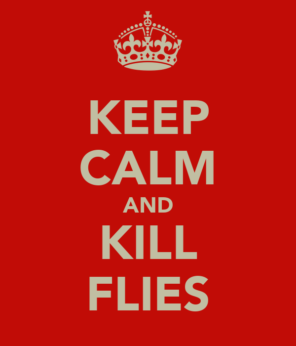 KEEP CALM AND KILL FLIES