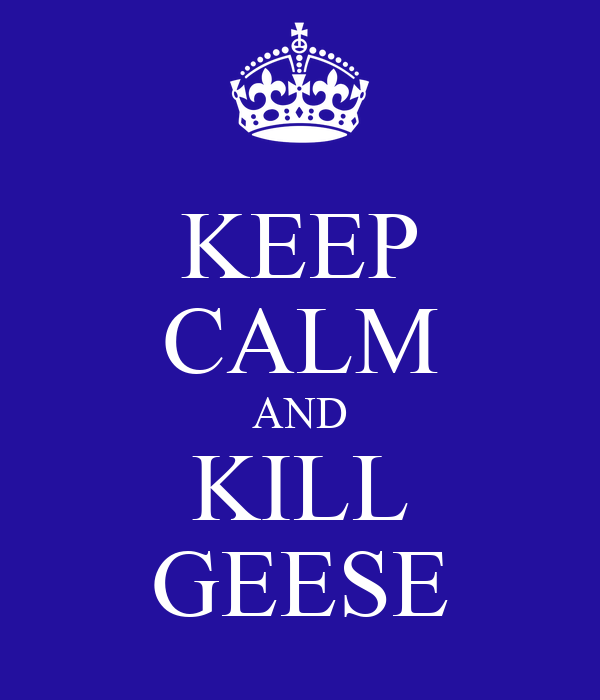 KEEP CALM AND KILL GEESE