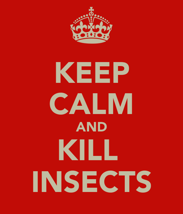 KEEP CALM AND KILL  INSECTS