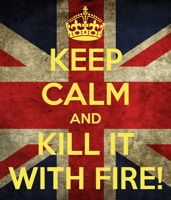 KEEP CALM AND KILL IT WITH FIRE!