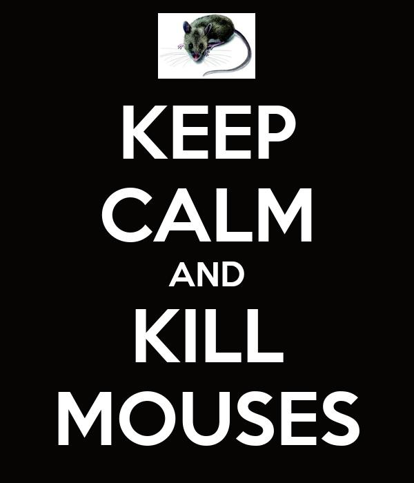 KEEP CALM AND KILL MOUSES