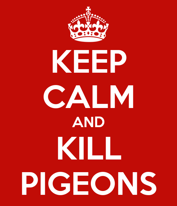 KEEP CALM AND KILL PIGEONS