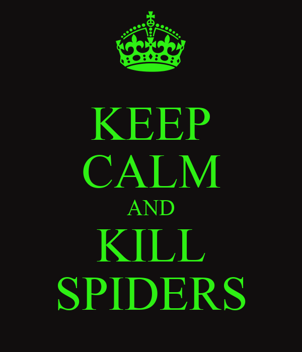 KEEP CALM AND KILL SPIDERS