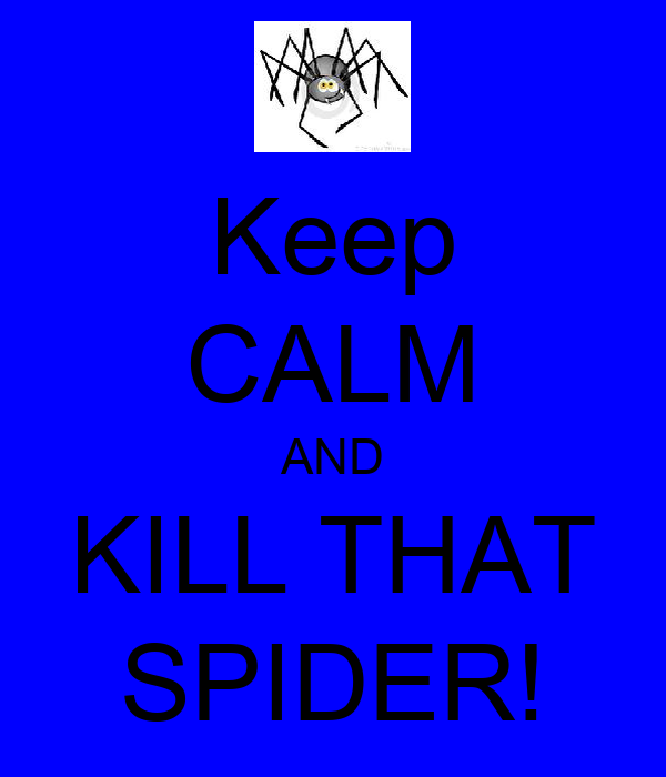 Keep CALM AND KILL THAT SPIDER!